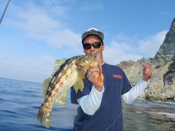 Catalina adventure radio silence fishing for Calico bass fishing