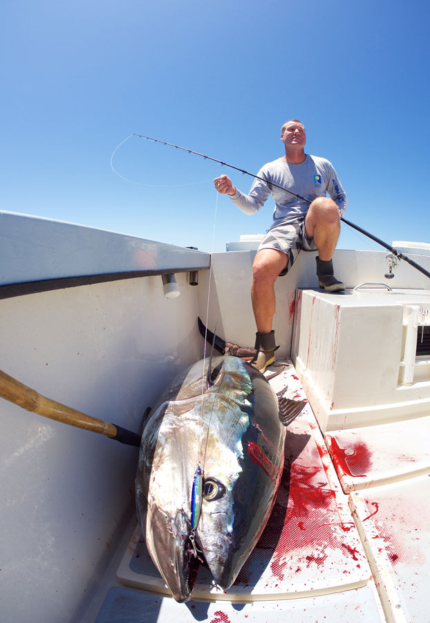 180+lb bluefin tuna taken on a very light set-up.