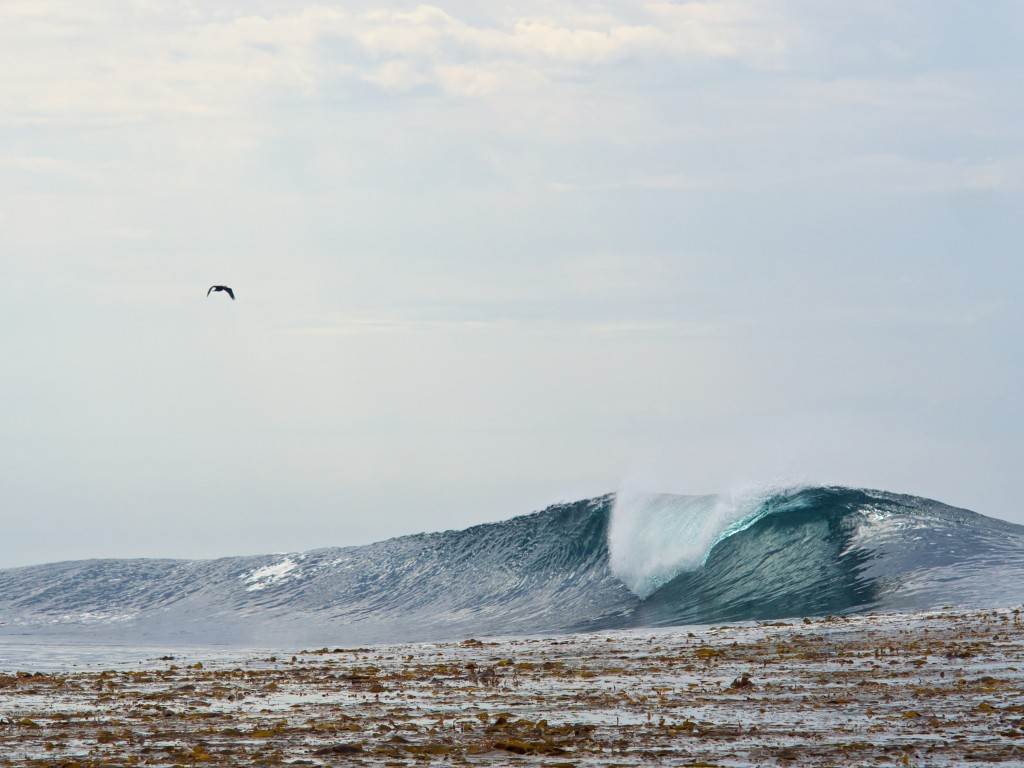 Just around the corner there's a wave that looks like your childhood sketchbook.