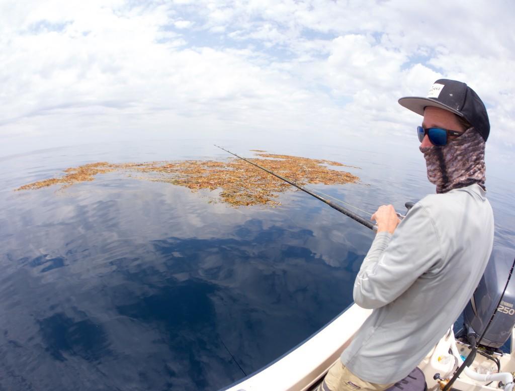 Making bait in Kelpland.