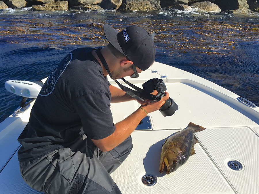 Jeff Rodgers records finer details of his biggest calico bass to date.